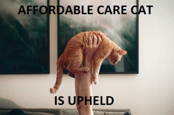 affordable care cat upheld