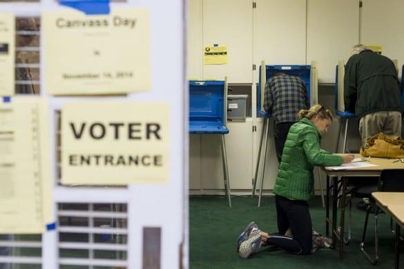 2014 midterm voters